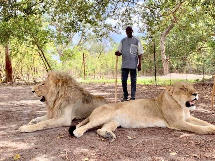 PHOTOS - Vacances gouvernementales : Aly Ngouille Ndiaye cherche la force chez les..lions avec sa famille