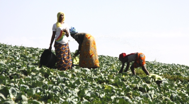 Toukar : Demba Diouf et l'homme d'affaires Farba Ngom offrent aux femmes, un financement de 48 millions FCfa