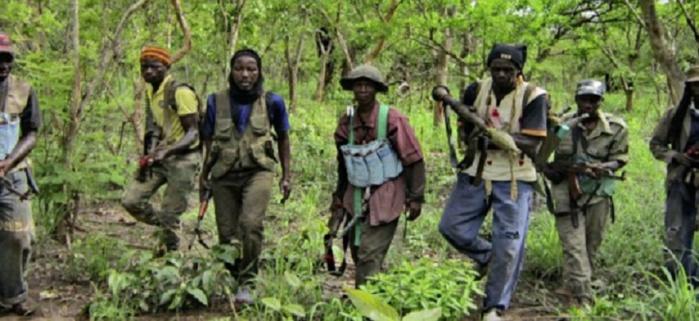 Moussa Cissé, ''cadre casamançais'': « on peut suspecter Robert Sagna de ne pas vouloir que la situation se termine en Casamance »