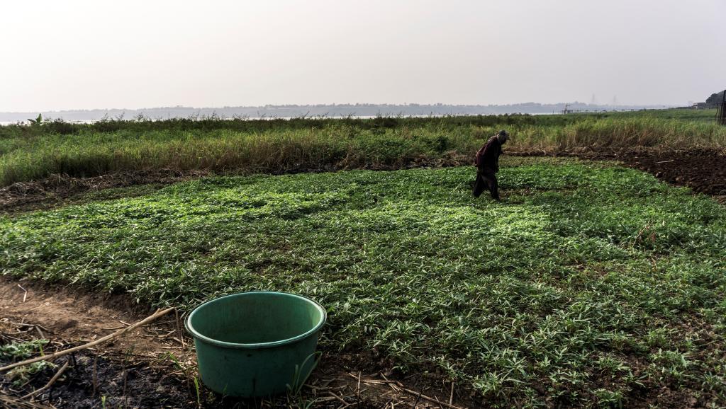 RDC: Quatre banques de développement visées par Human Rights Watch