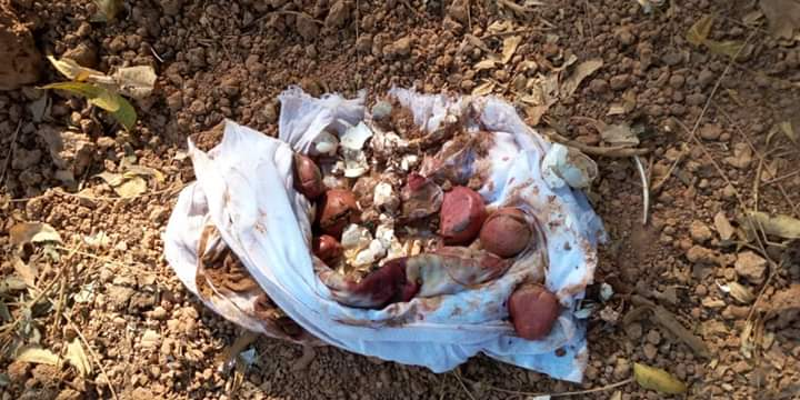 Kédougou: Un arsenal mystique découvert sur la tombe d'un notable de la région
