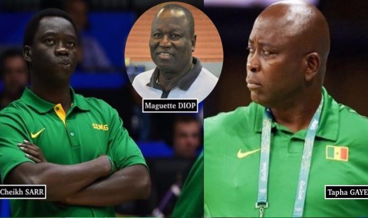 Basket: Tapha Gaye nouveau DTN, Cheikh Sarr et Maguette Diop démis de leurs fonctions