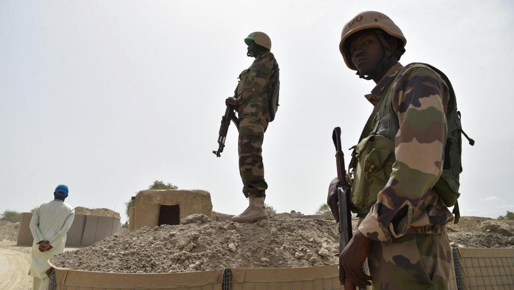 Niger: Quatorze militaires tués lors d'une embuscade dans la région de Tillabéri