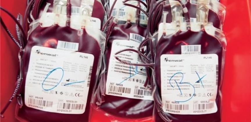 Hamidou Diallo: «Le Sénégal est le seul pays au monde où l'on vend des poches de sang »