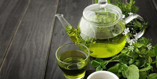 Boire fréquemment du thé vert permettrait de vivre plus longtemps