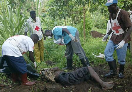 RDC: Reprise des massacres à Beni, au moins 36 civils tués à la machette