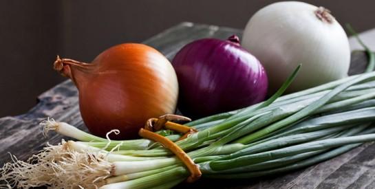 Voici les précautions et ces aliment qui aident à combattre le cancer !