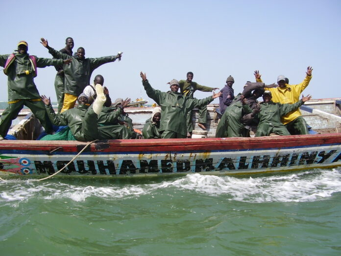 Saint-Louis: 400 licences remises aux pêcheurs de Guet-Ndar