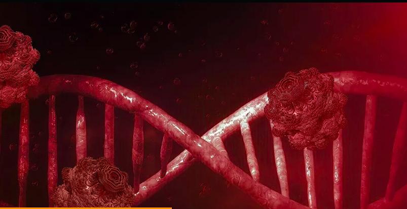 La Russie a entièrement décodé le génome du coronavirus