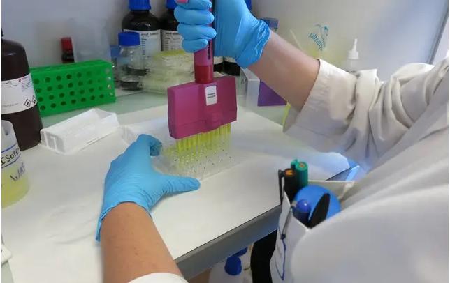 Coronavirus : Tout savoir sur XAV-19, ce traitement à base d'anticorps en cours d'élaboration
