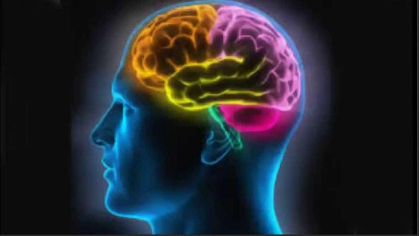 Le coronavirus affecte-t-il notre cerveau ?