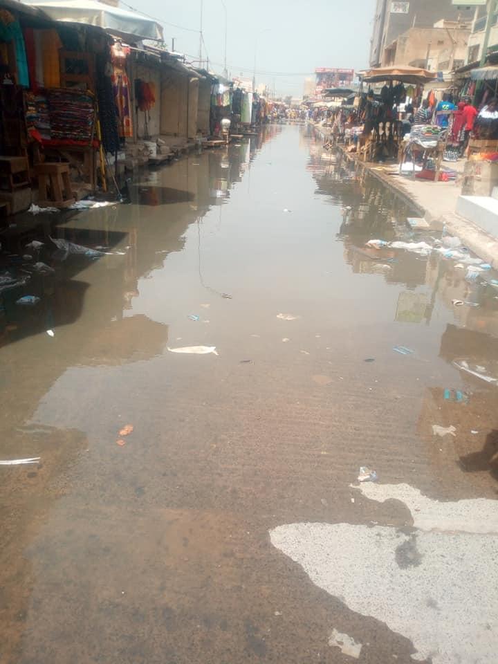 Covid -19 / Marché HLM: L'insoutenable spectacle des eaux usées