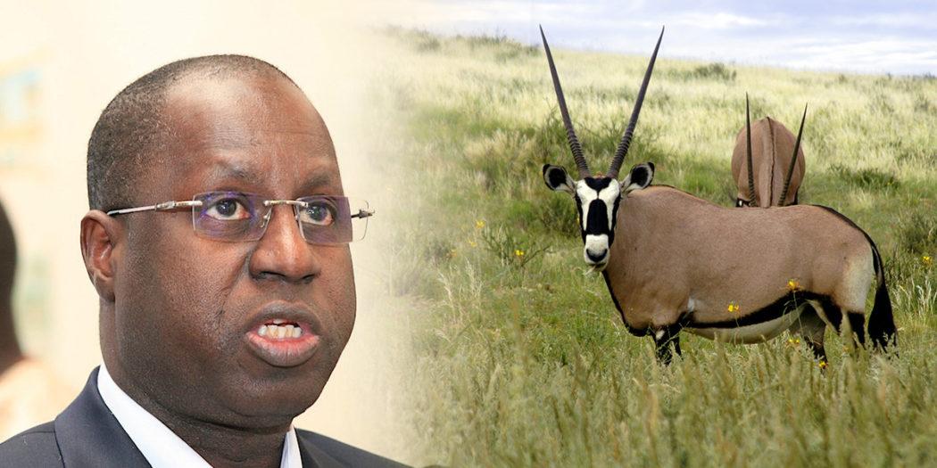 Affaire des « gazelles d'Abdou Karim Sall »: Les journalistes convoqués à la DIC, libérés