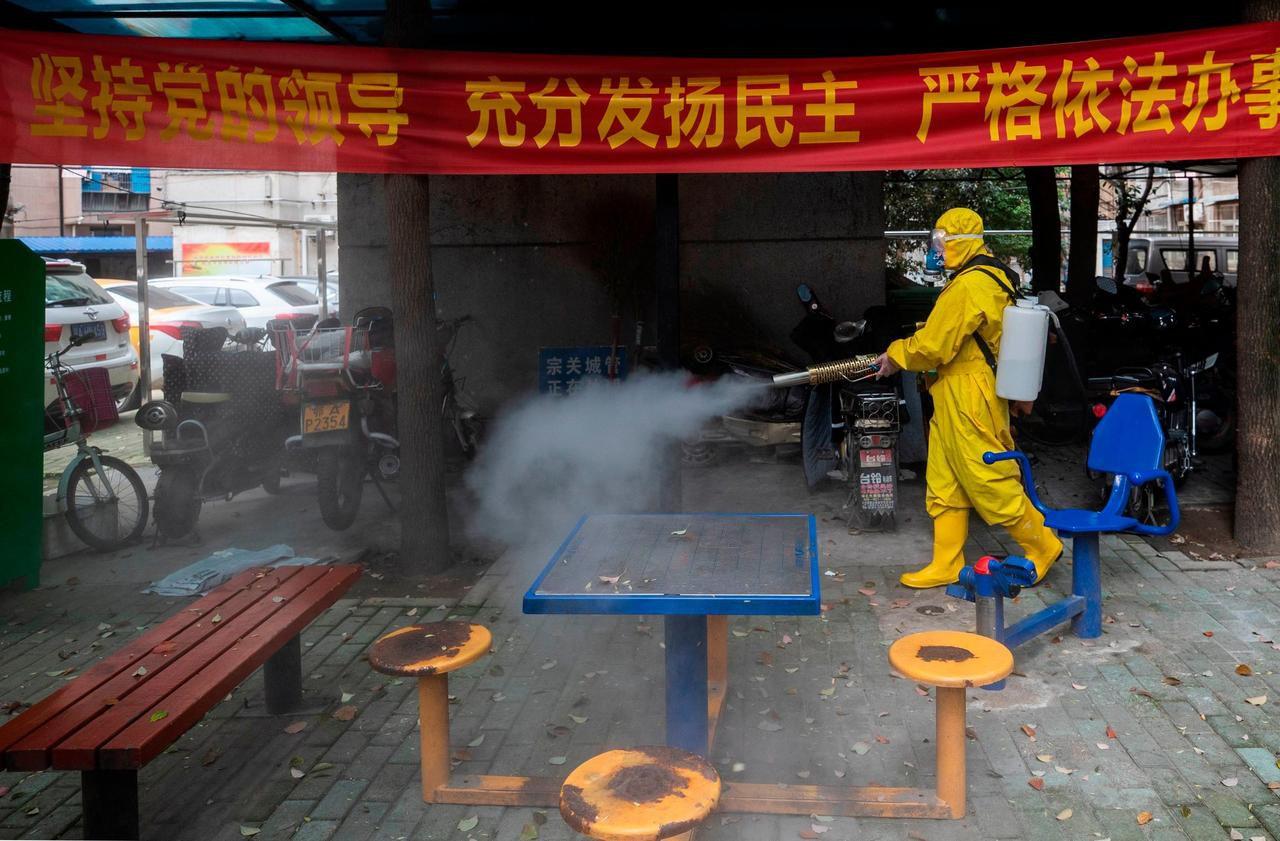 Chine : un village placé en quarantaine après un cas mortel de peste Bubonique !