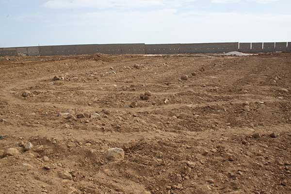 Litige foncier au Sénégal/ Actionaide : « Plus de 800.000 ha de terres feraient objet d'accaparement»