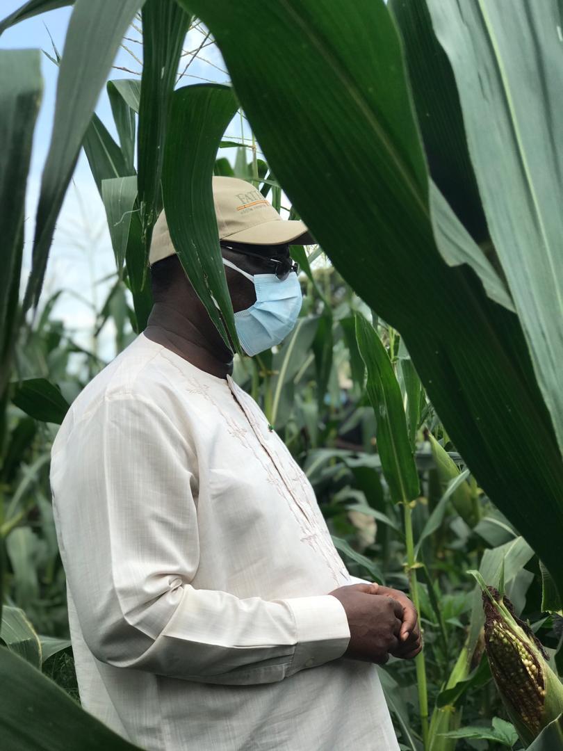 VIDEO+PHOTOS/ Visite économique: Le Président Macky Sall sur les routes du Nioro en direction des champs