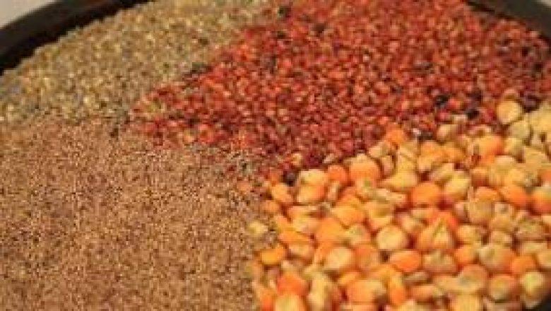 Résidus et contamination dans les produits alimentaires: les Sénégalais en danger de mort !