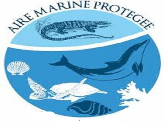 Aire marine protégée: la surveillance de Sangar demande plus de moyens, plaide son conservateur
