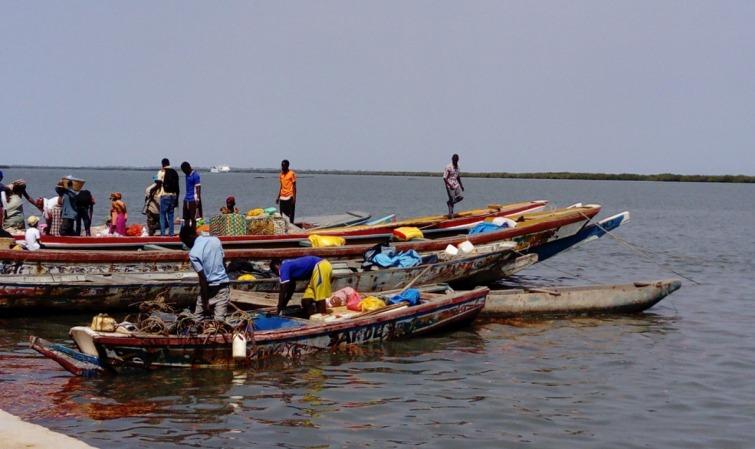 Gambie - Ministère de la Pêche: Un scandale de corruption qui ne sent pas bon