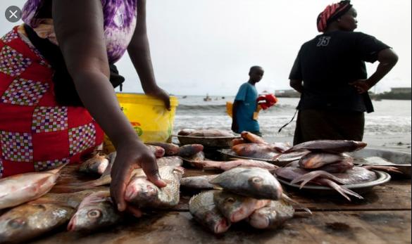 Journée internationale de l'alimentation: Macky Sall engage ses ministres à consolider la dynamique
