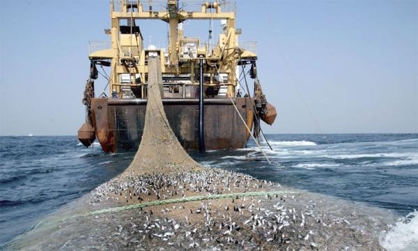 Secteur de la Pêche : L'UNAPAS demande à Macky d'arrêter l'octroi de licences