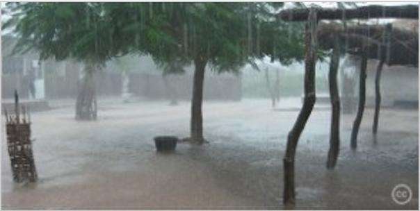 Pluie hors saison  4,5 millimètres enregistrés à Kaolack