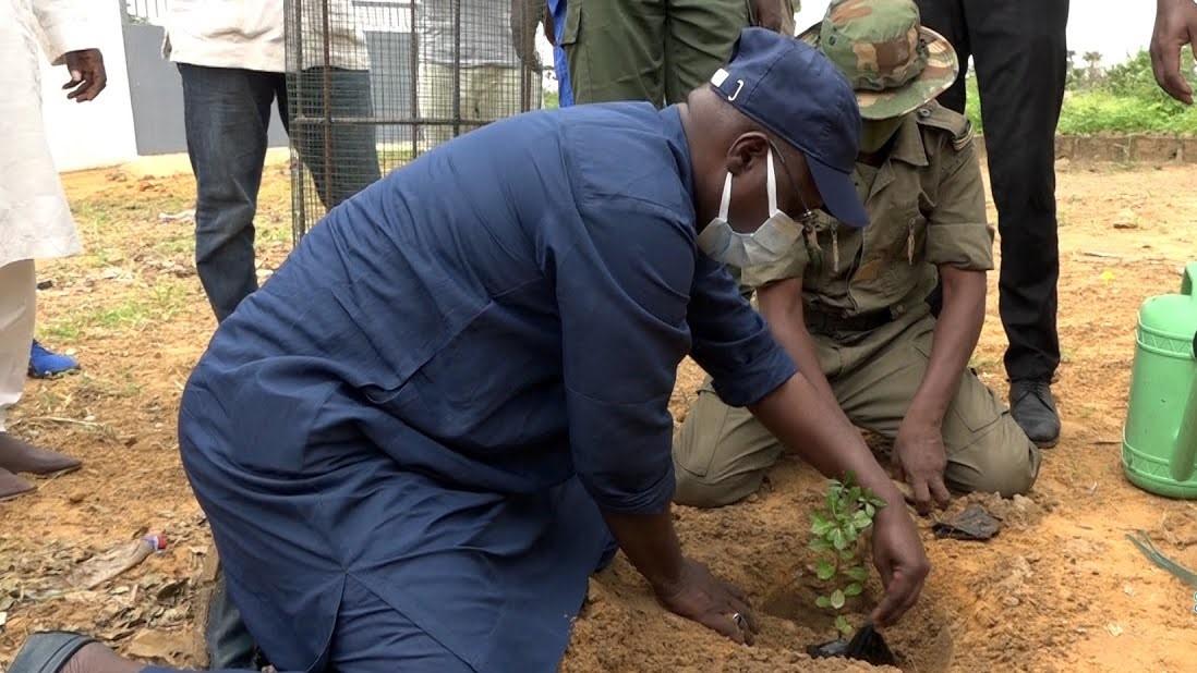 """Grande Muraille verte: """" La vision du Président Macky Sall est beaucoup plus ambitieuse que celle de Wade"""""""