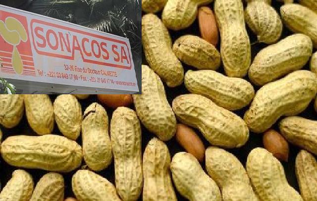 Campagne arachidière à Ziguinchor : aucune graine reçue à l'usine, les huiliers haussent le ton