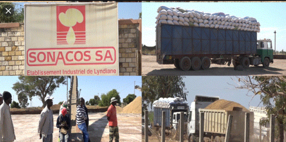 Sonacos-SA: Macky Sall insiste sur sa préservation