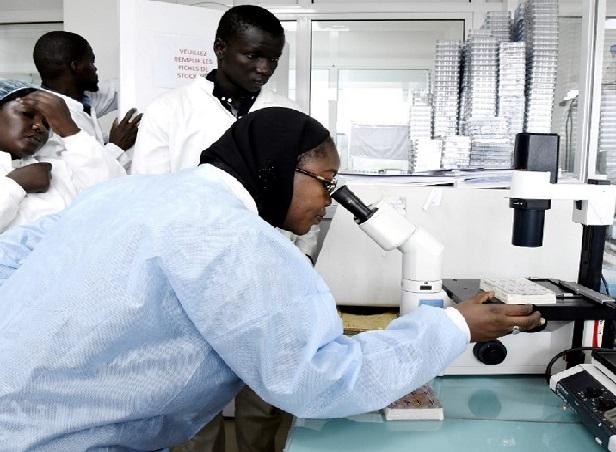 Gestion de la COVID- 19: L'éloge de l'Oms sur le «leadership sénégalais» dans la riposte