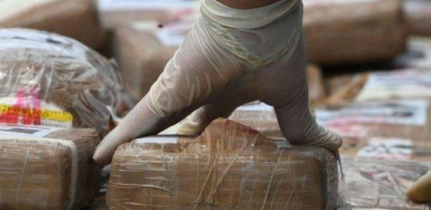 Saisie record de drogue à Ngaparou: Sur l'odeur des 675 kilos de cocaïne interceptés
