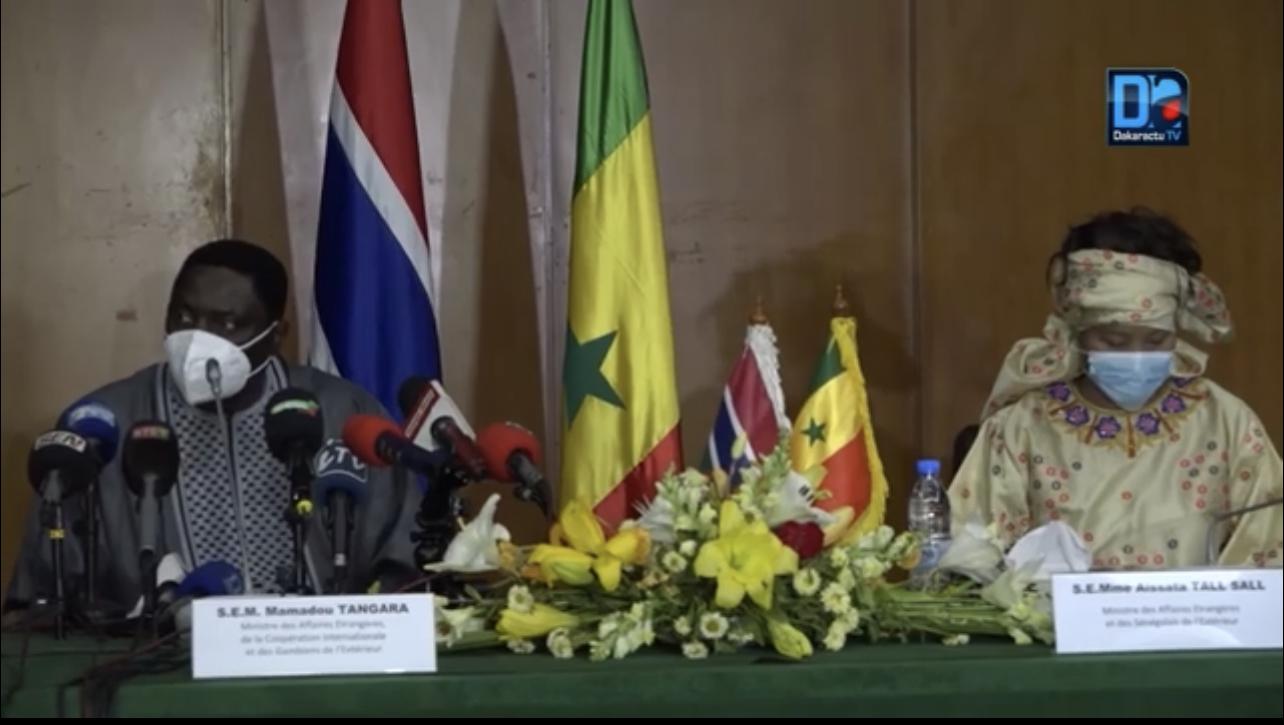 Trafic illicite de bois: ce que craint la Gambie sur l'écosystème sénégalo-gambien