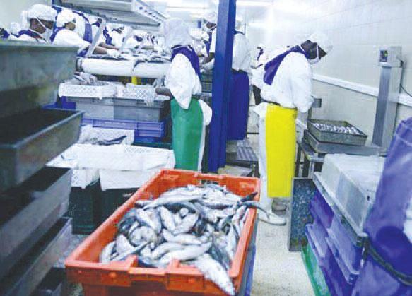 Keur Mousseu: Vive polémique autour de l'implantation d'une poissonnerie