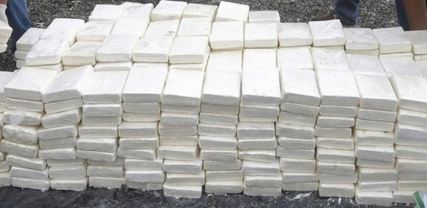 Saisie record de 675 kg de cocaïne: Un membre du cartel tombe à Dakar
