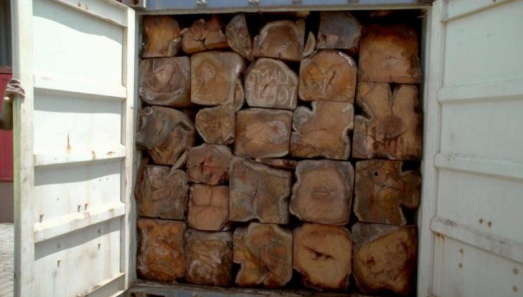 """Trafic de bois de Casamance / 22 containers saisis, un suspect arrêté: La Gambie """"s'achète"""" une bonne conduite"""