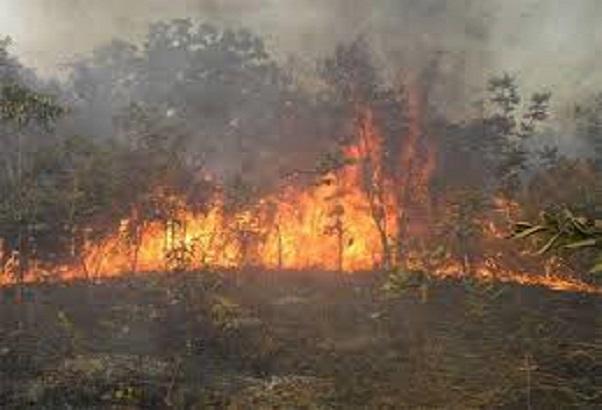 Sédhiou: Début de la campagne de riposte contre les feux de brousse