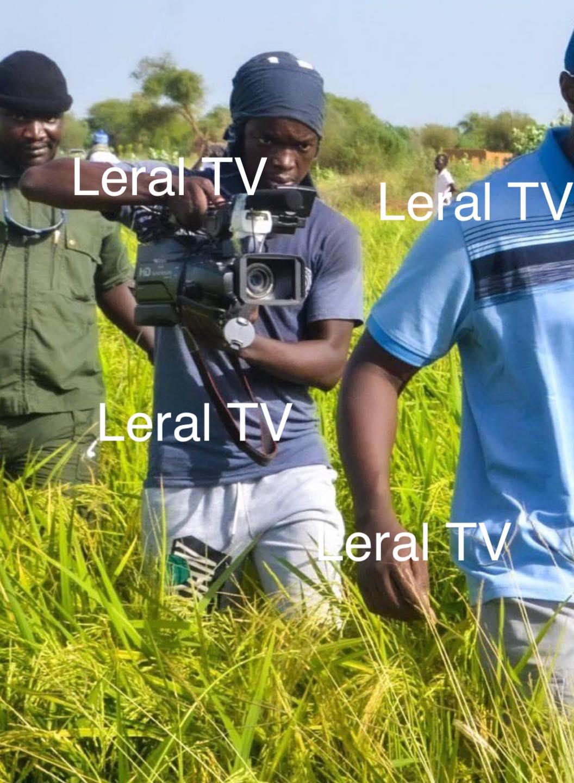 Ibrahima Fall , Le Cameraman de Jotna est libre