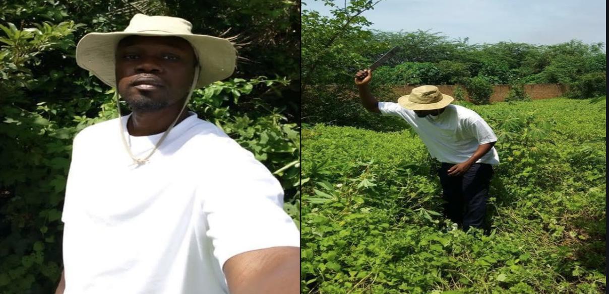 Ousmane Sonko: « J'invite les membres du Mfdc à déposer les armes »
