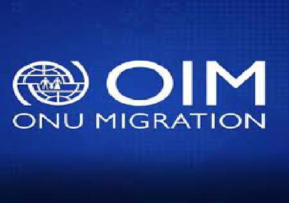 Situation scandaleuse à l'OIM : Les travailleurs sénégalais dénoncent la « mafia italienne » et la précarité