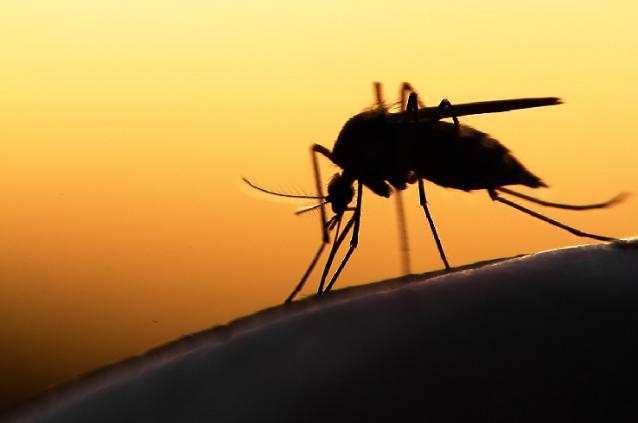 Lutte contre le paludisme: Des machines de haute technologie de biologie moléculaire réceptionnées