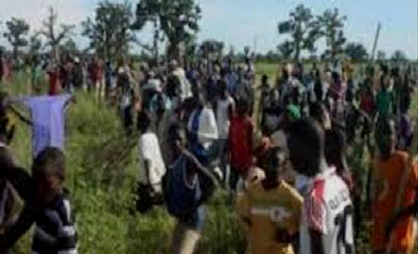Diourbel - Projet de lotissement de Ndayane, Commune de Tocky Gare: Le collectif des paysans dit niet