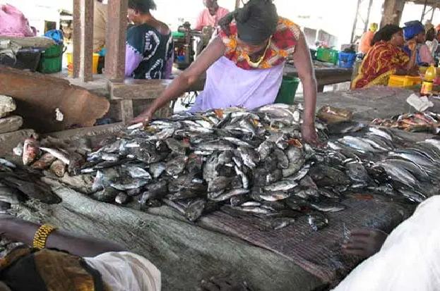 Marché central aux poissons de Pikine: Discorde entre agents de la mairie de Dalifort et acteurs économiques