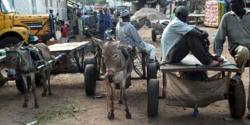Lutte contre l'insécurité: Cambérène 1 lance une croisade contre les charretiers