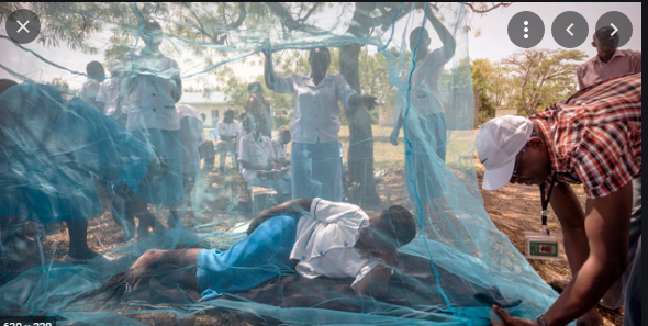 Paludisme: Le Sénégal enregistre en 2020, une hausse de 25% de cas