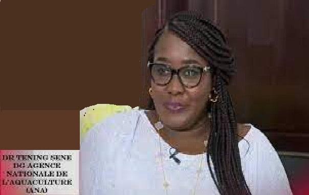 Ndiaganiao: Des chefs de village portent la candidature de Dr. Téning Sène