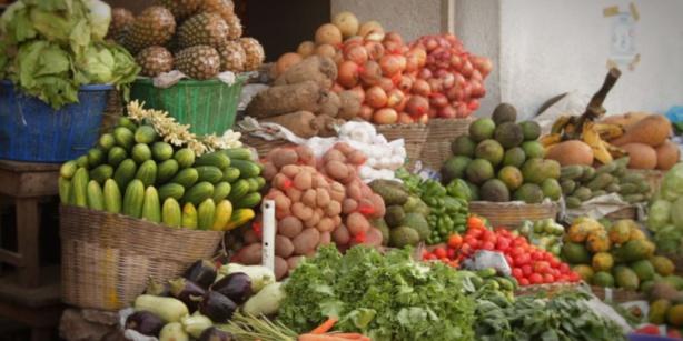 Kaolack/ Commercialisation des produits agricoles: Une nécessité de redynamiser le cadre national, évoquée