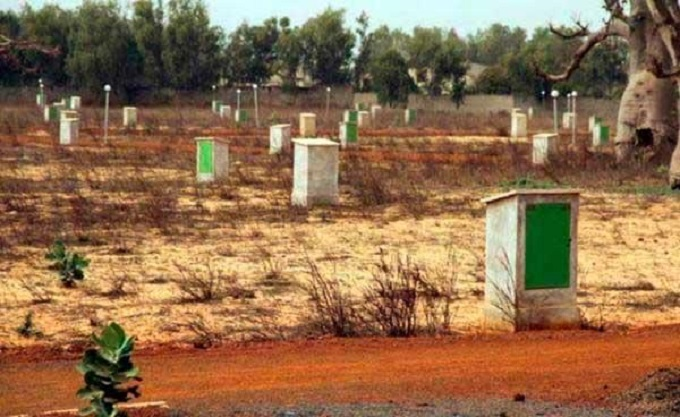 Problème foncier: Après Mbour 4, la DSCOS détruit plus de 5000 bornes dans la Commune de Chérif Lô