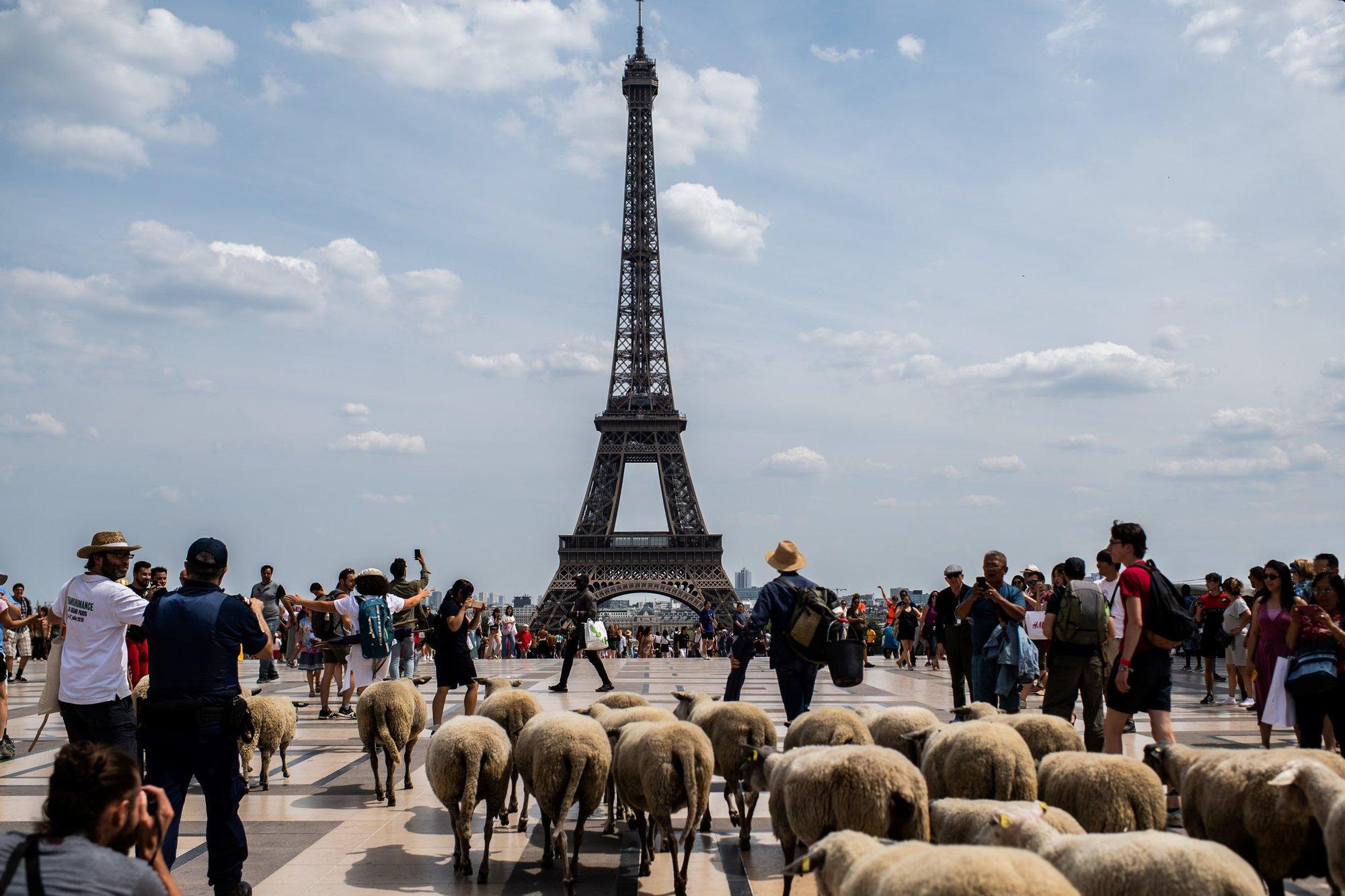 "Tabaski 2021: La ville de Paris transformée en ""daaral"""