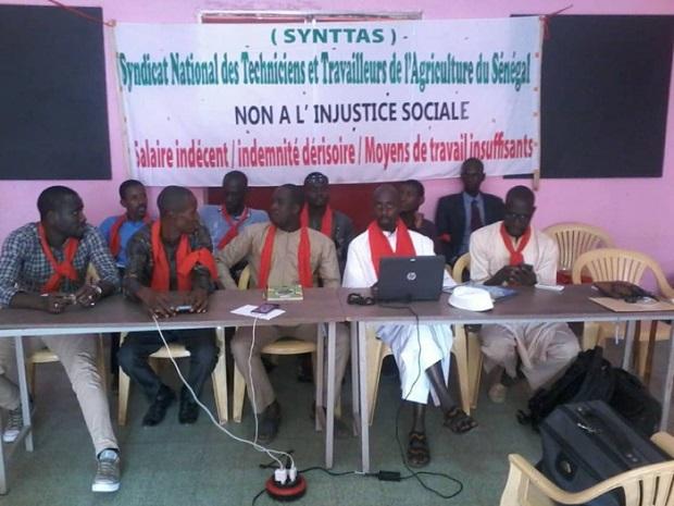 Travailleurs et techniciens de l'agriculture: La grève de la faim des délégués du Synttas, a duré 24 heures