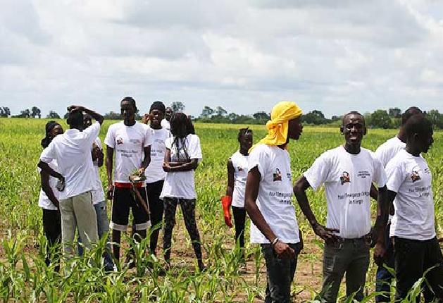 34% des terres du Sénégal dégradées : Leur restauration, des opportunités d'emplois pour les jeunes'